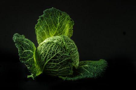 Leksykon diet: dieta kapuściana